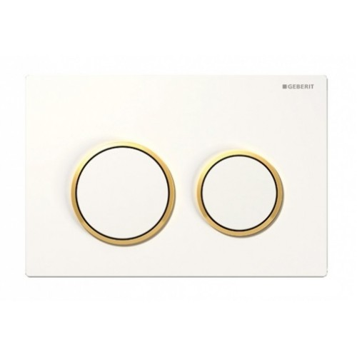 Kappa 21 Dual Flush Botton & Excess Plate/White plate with gold trim