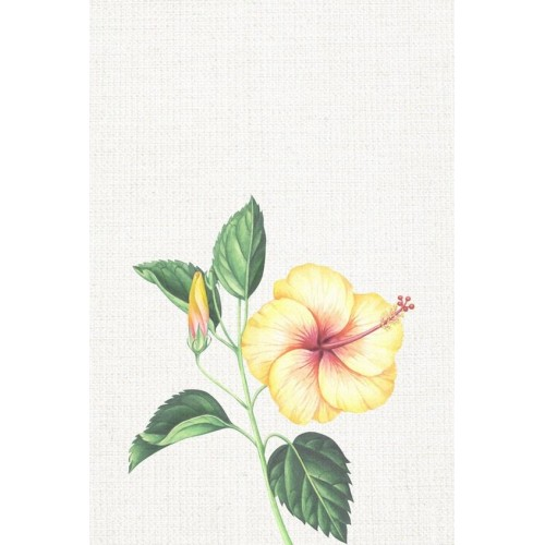 Floral Tropics I Canvas Wall Art/Small