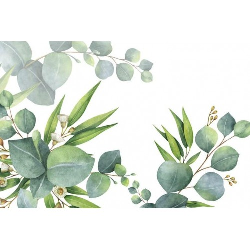 Flora Australis I Canvas Wall Art/Small