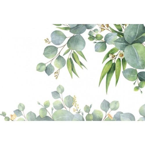 Flora Australis II Canvas Wall Art/Small