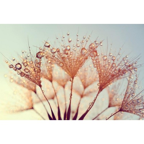 Ethereal Canvas Wall Art/Small