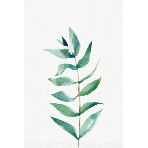 Elegant Eucalypt I Canvas Wall Art/Large