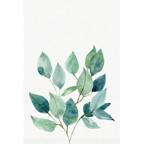 Elegant Eucalypt II Canvas Wall Art/Small